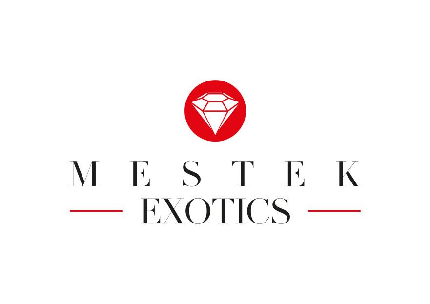 Mücevher Tasarım Firmasına Logo yarışmasına tasarımcı mgyknt tarafından sunulan  tasarım
