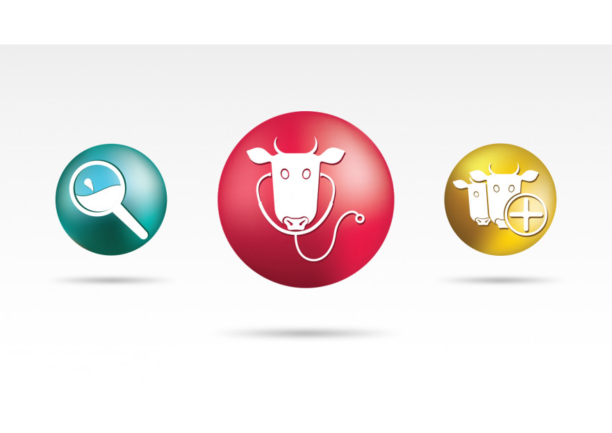 Online Yazılım İkonları yarışmasına tasarımcı •Peregrine• tarafından sunulan  tasarım