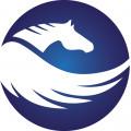 Tasarlayan tulpar.tasarım-Şirketim için logo desteği